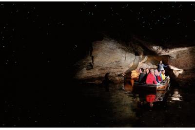 Tour a la cueva de 'luciérnagas luminosas'